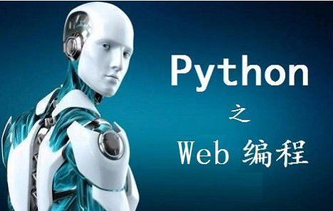 多谢大佬指点!为何Python要从Web开始,才不会半途而废?
